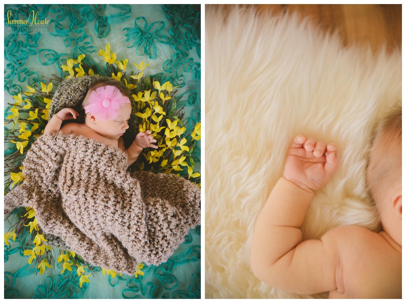 newborn photography york pa