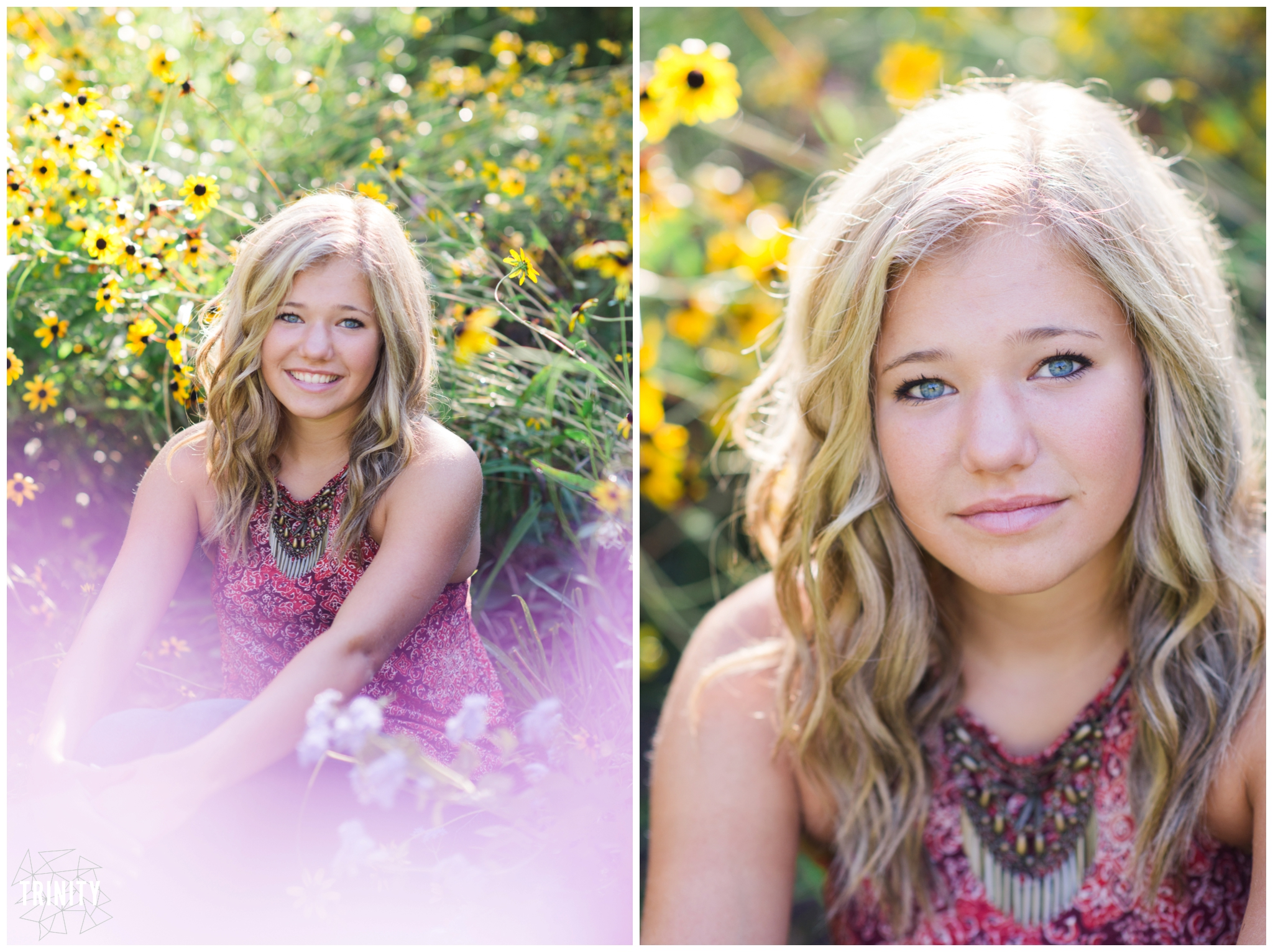 york pa senior portrait photographer