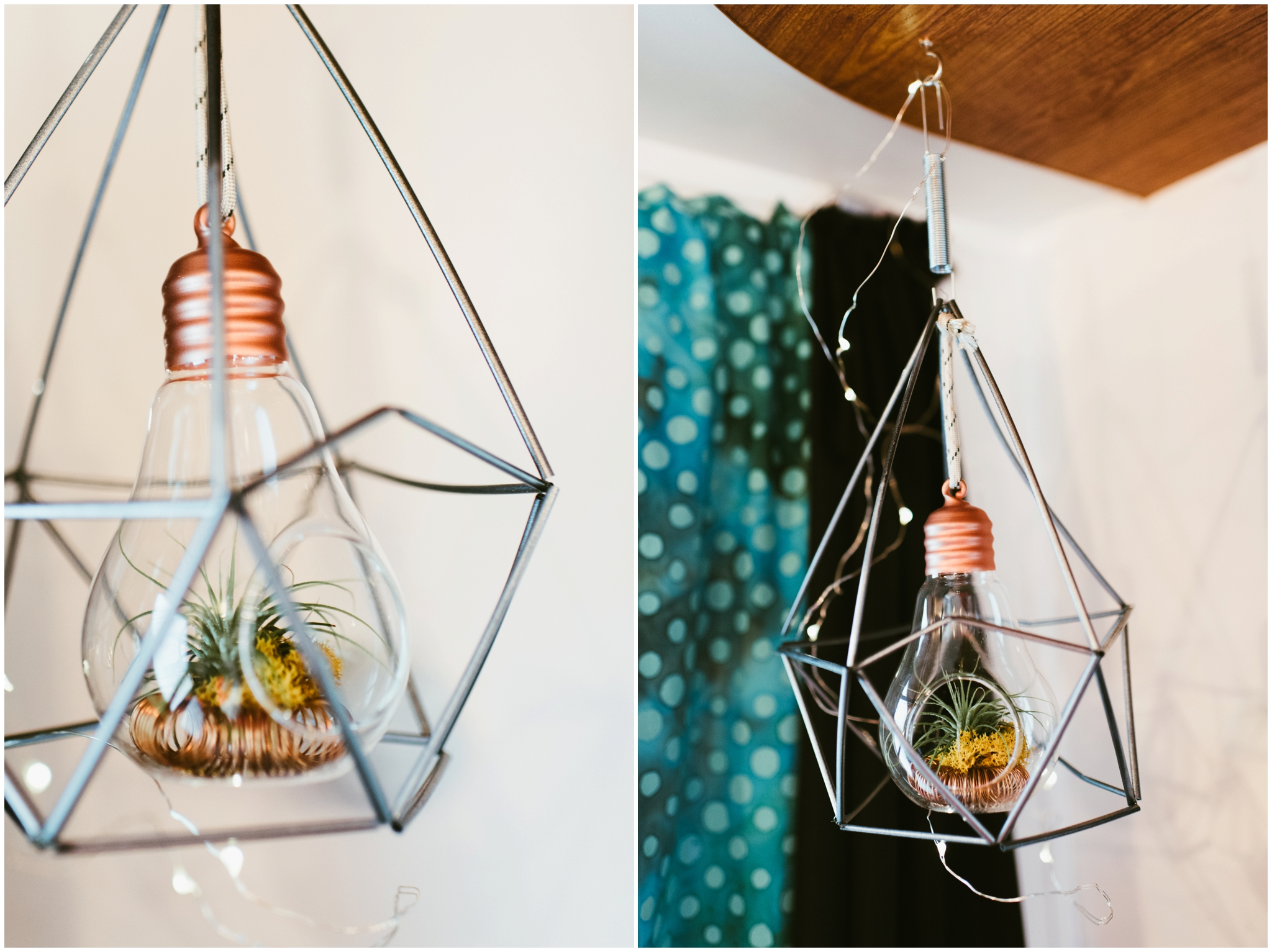 air plant decor boho rv