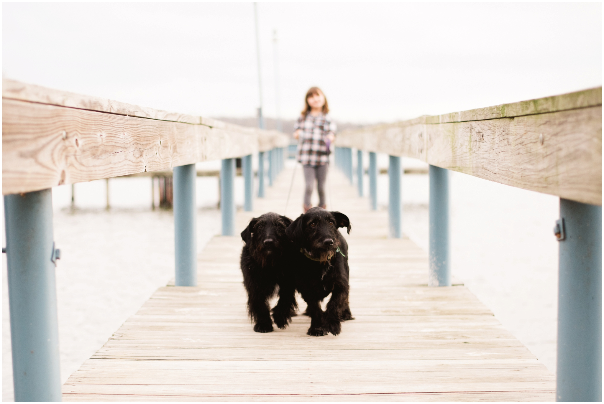 This is our dog StephenRiley on the right with his twin sister Lucy :)