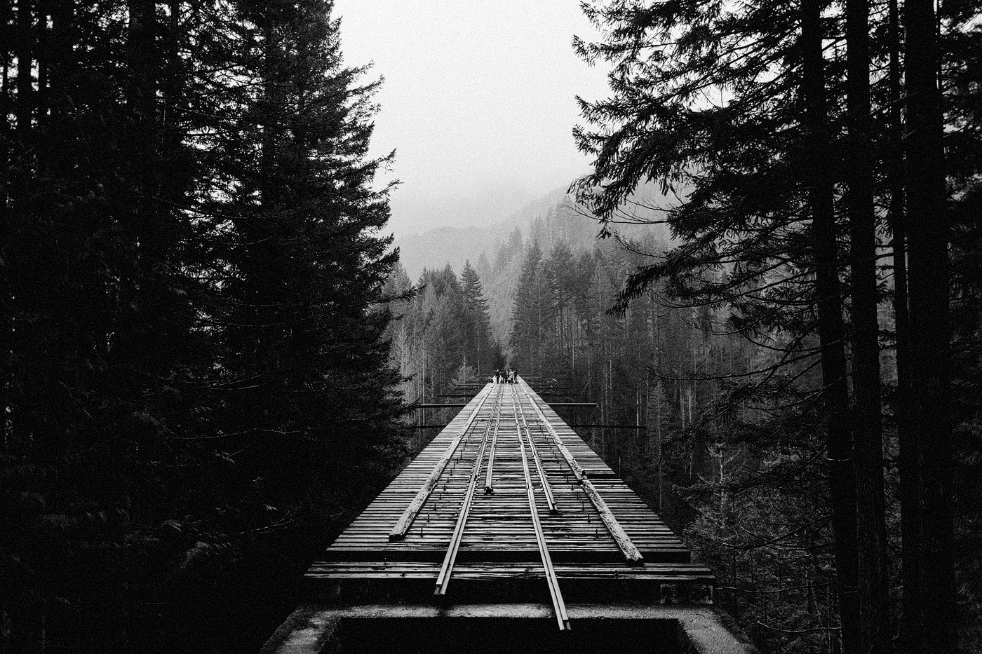vance creek bridge washington black and white