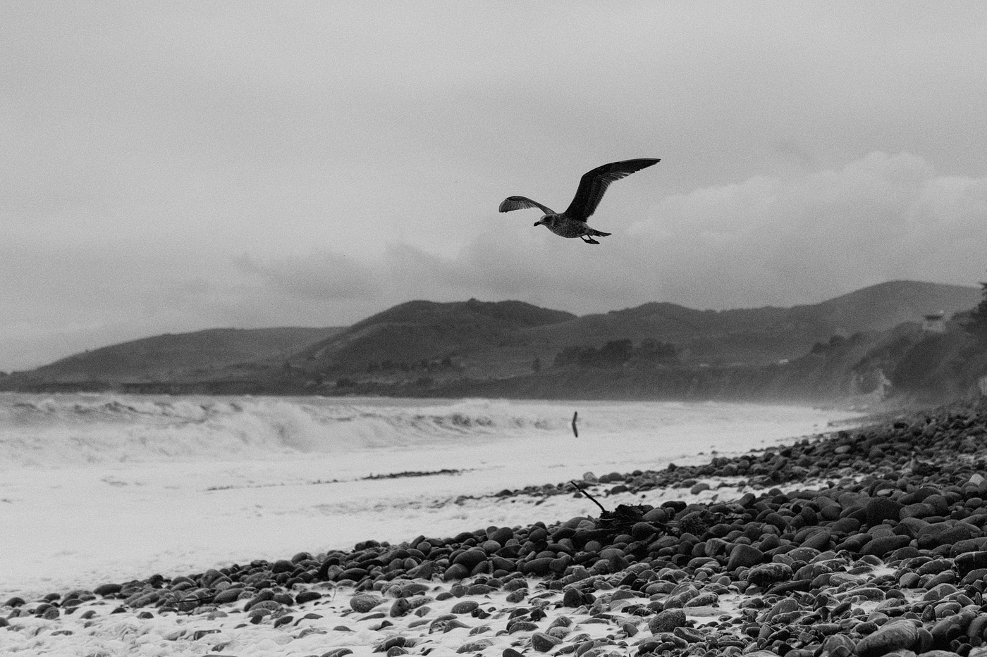 black and white film california stormy beach