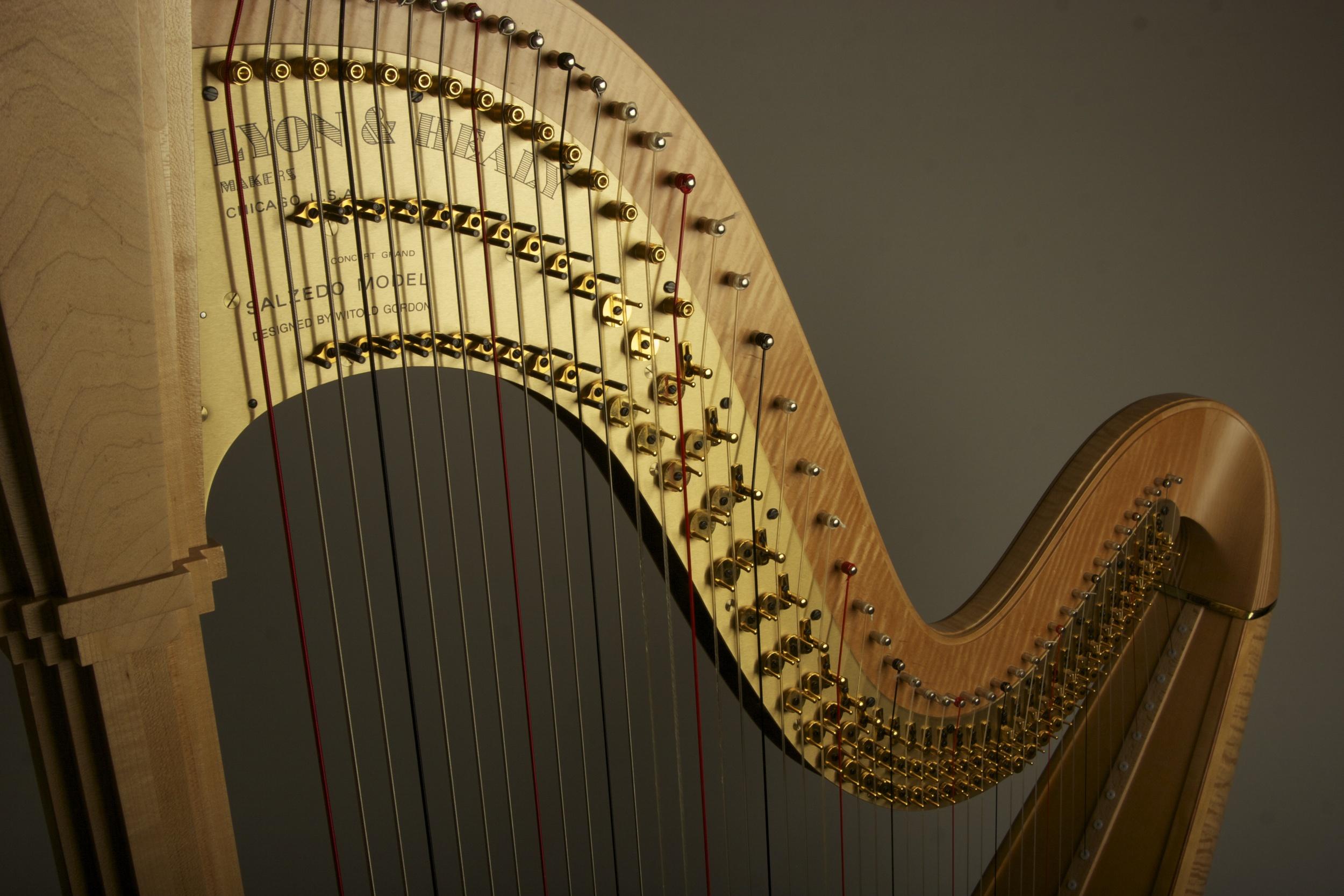 harp mechanism.jpg