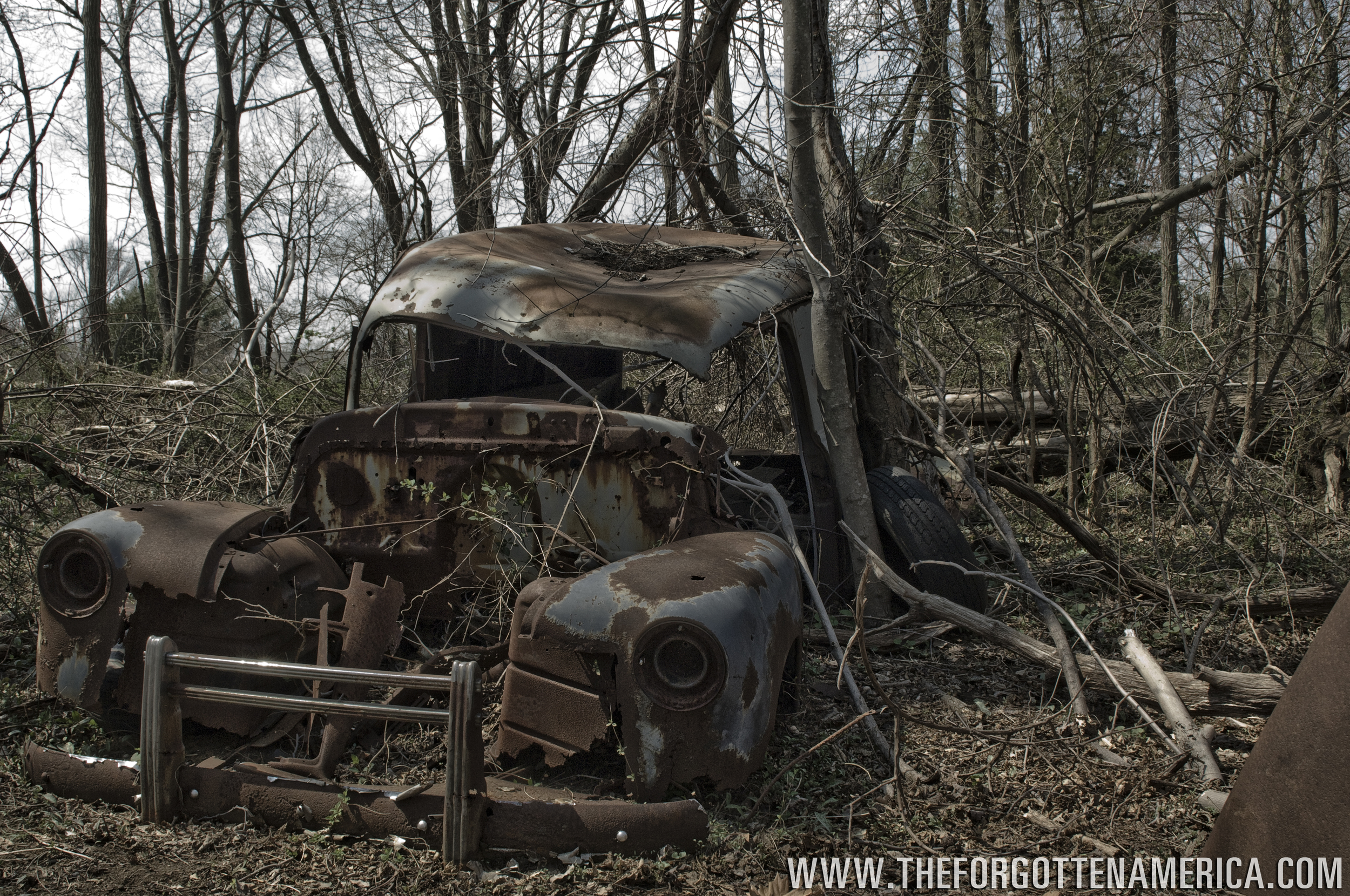 A vacant chevy sits in the woods to decay and rust. Marlboro, New Jersey