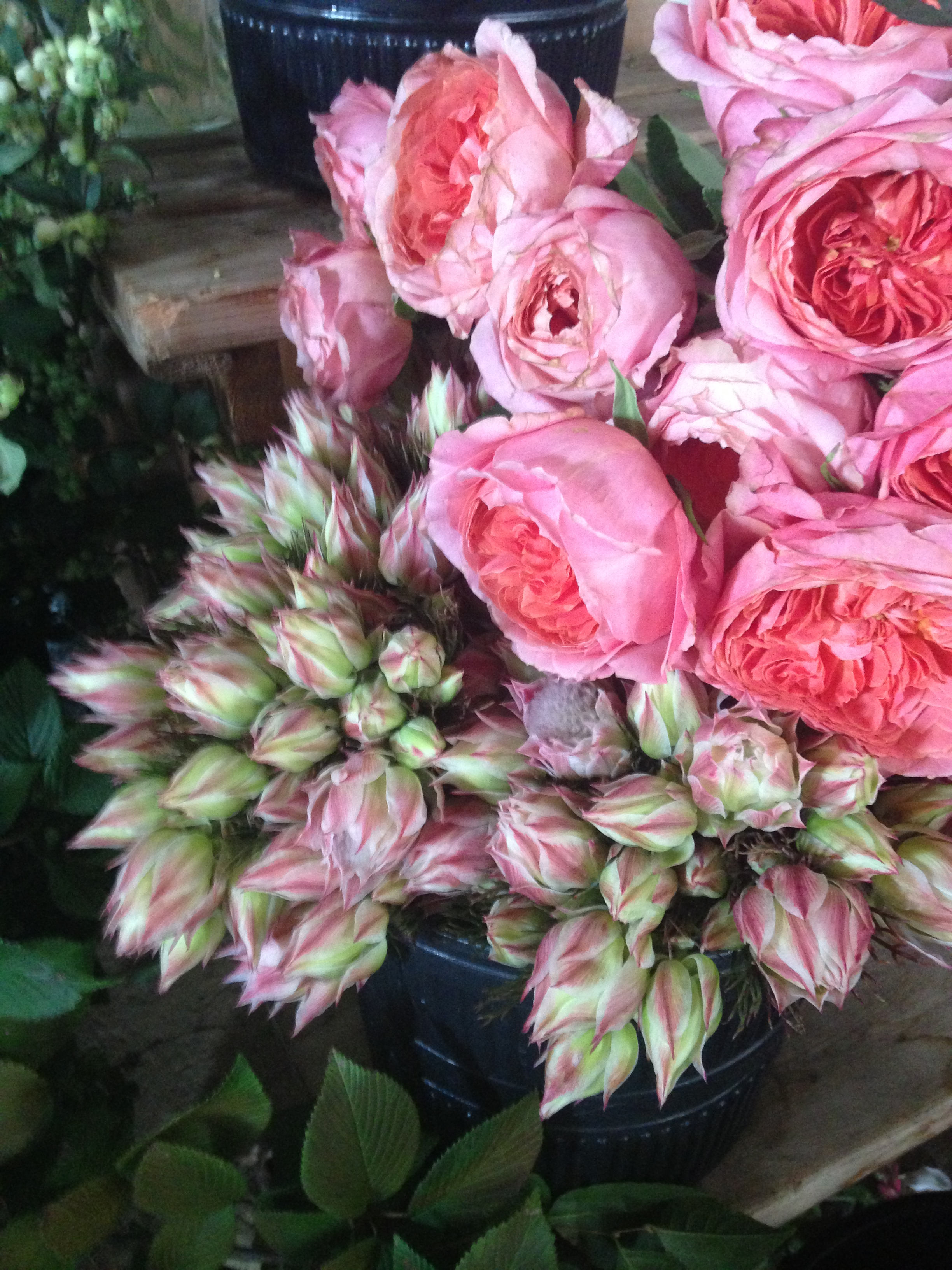 One of my favorite flowers, blushing bride protea on the left and the fan favorite on the right, gorgeous garden roses from California.