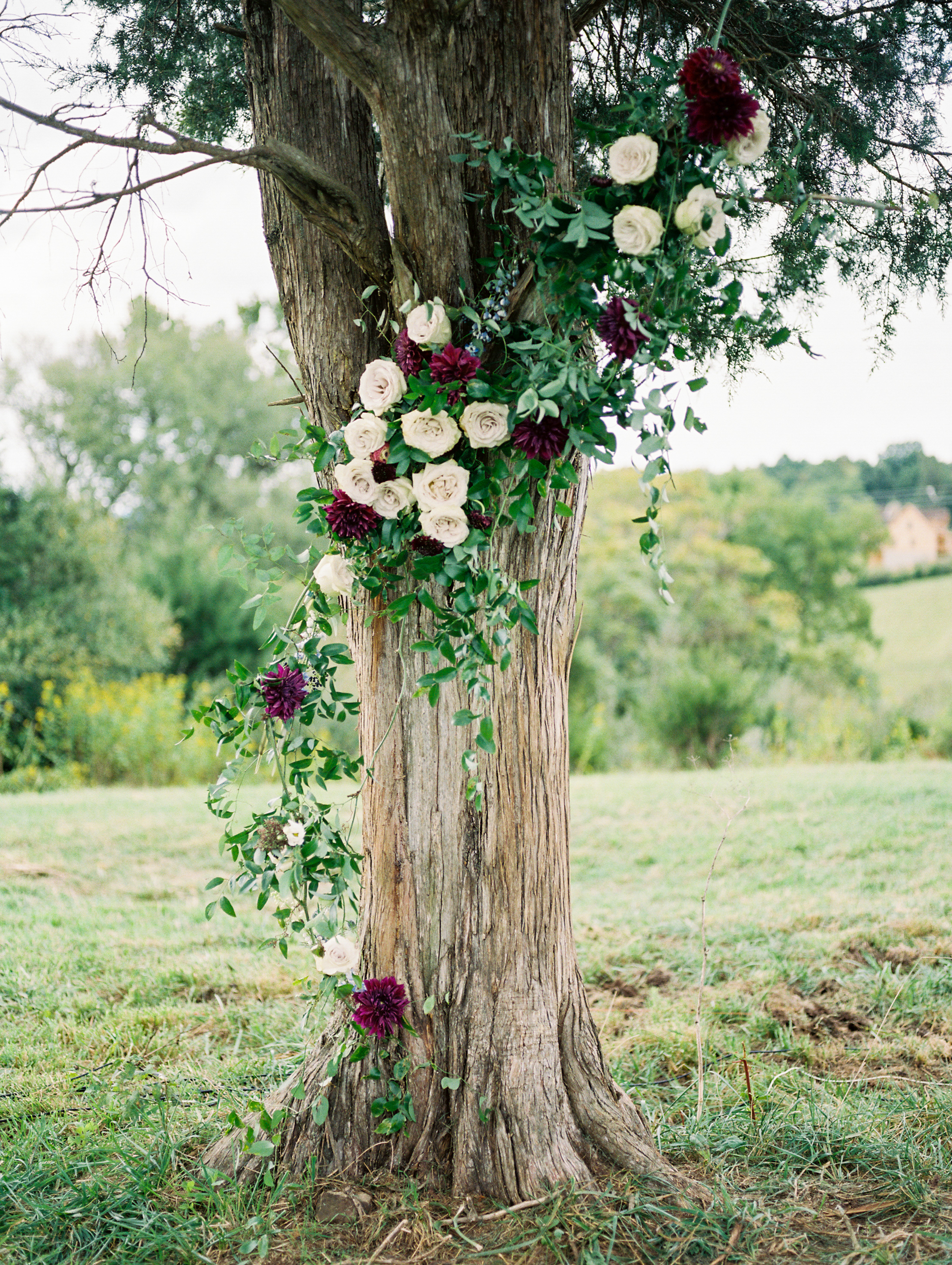 wedding flowers on tree