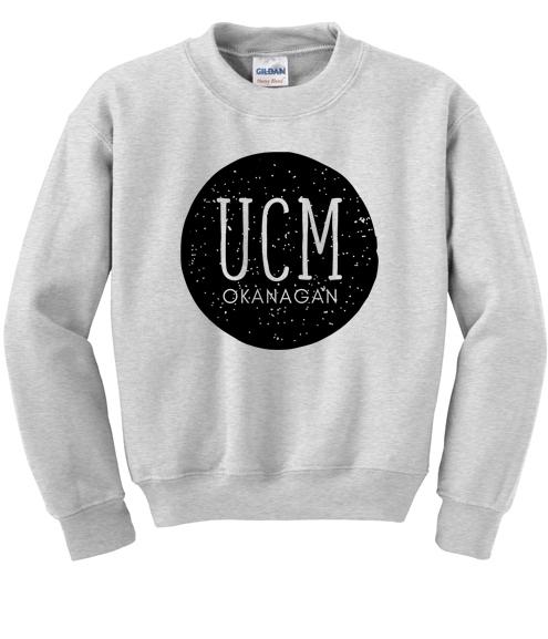 Crewneck sweatshirt - $25
