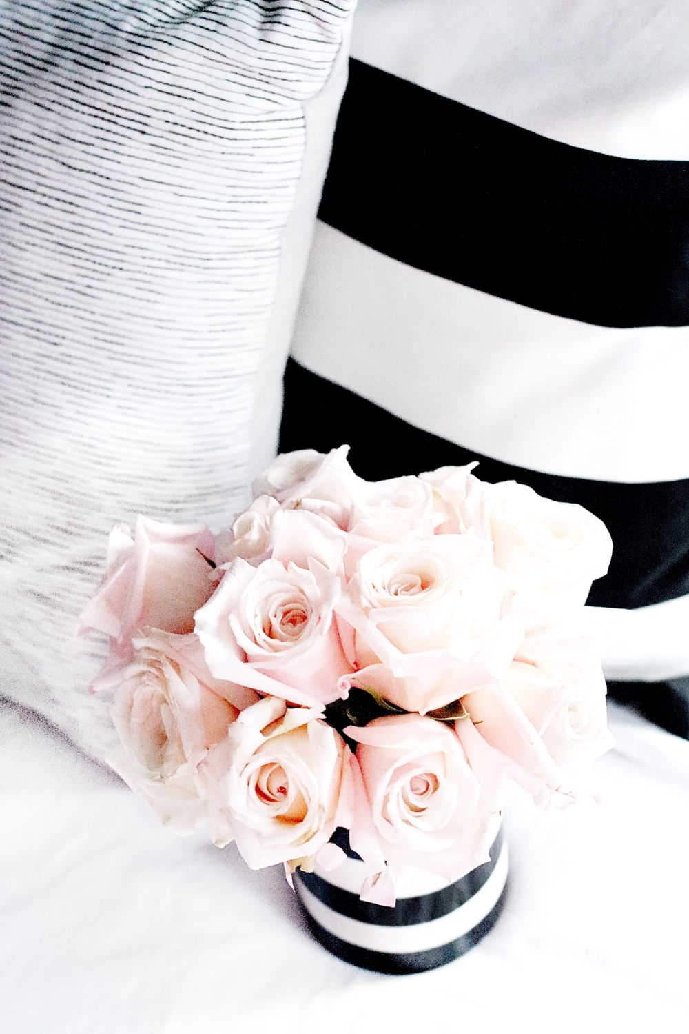 Blush Pink Roses and Stripes