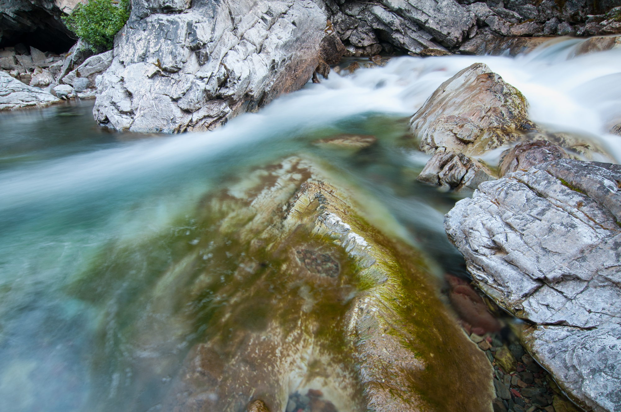 Cameron Creek, Waterton Lakes National Park, July 2015