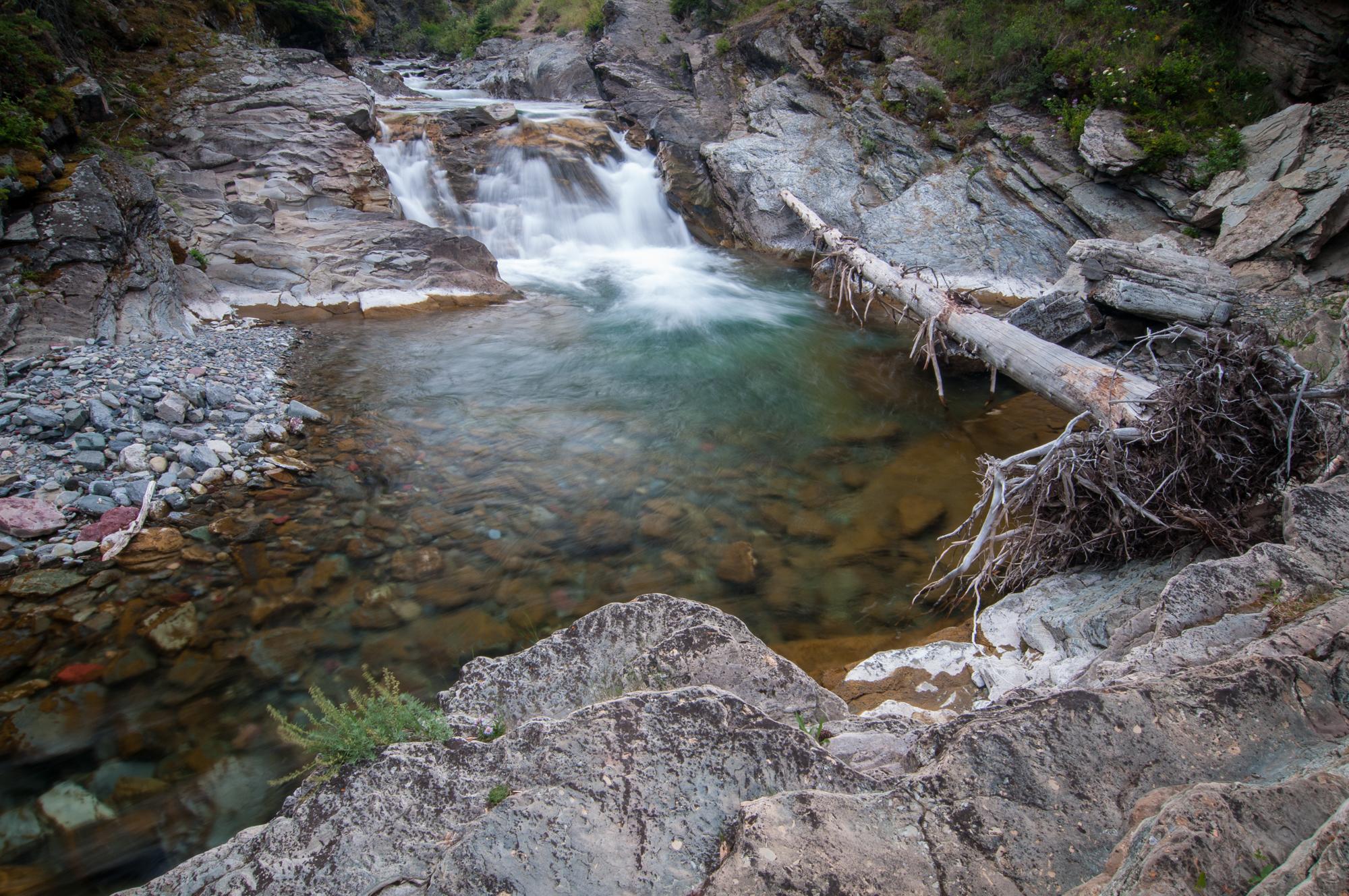 Blakiston Creek, Waterton Lakes National Park, July 2015