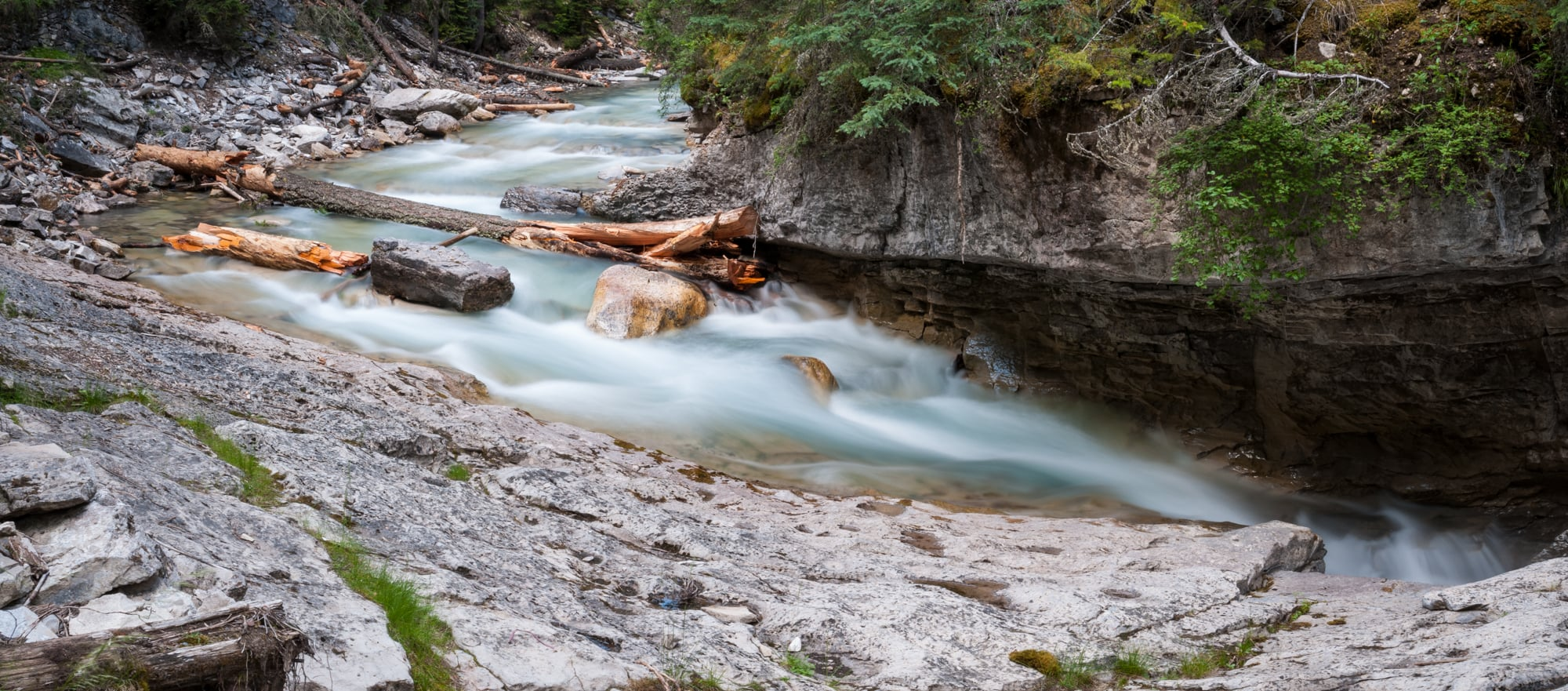 Johnston Creek, Banff National Park, July 2015