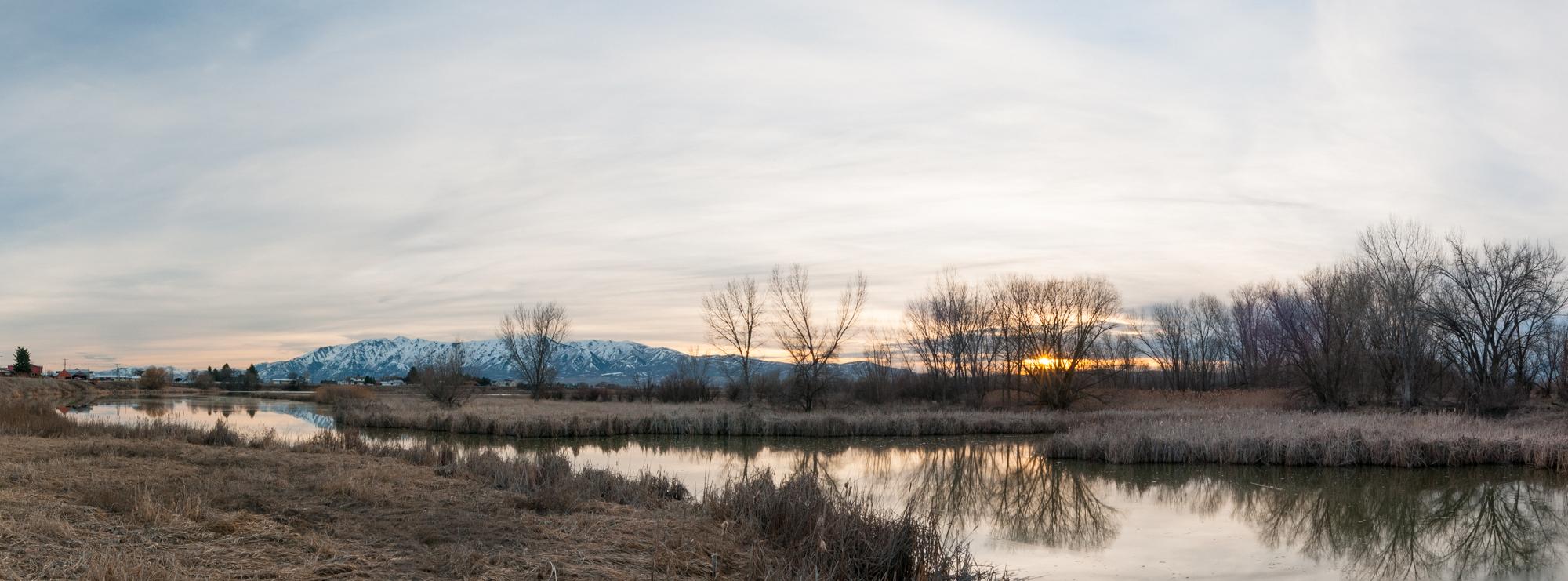 Marsh, Benson, Utah, 2016