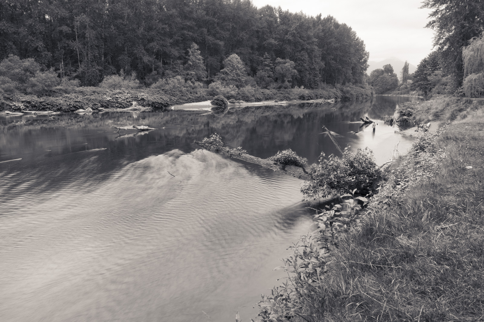 Snoqualmie River, Snoqualmie, Washington 2016
