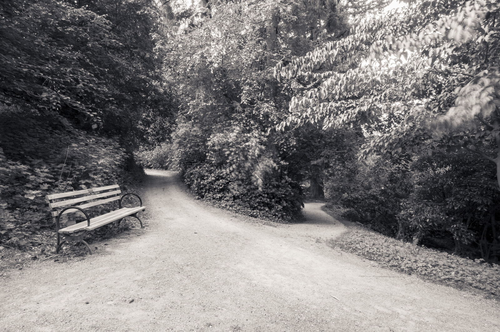 Washington Arboretum, Seattle, Washington 2016