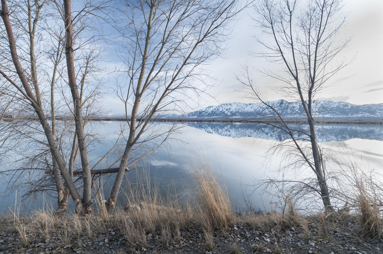 Cutler Marsh Near Benson Marina, Cache Valley, Utah, 2016
