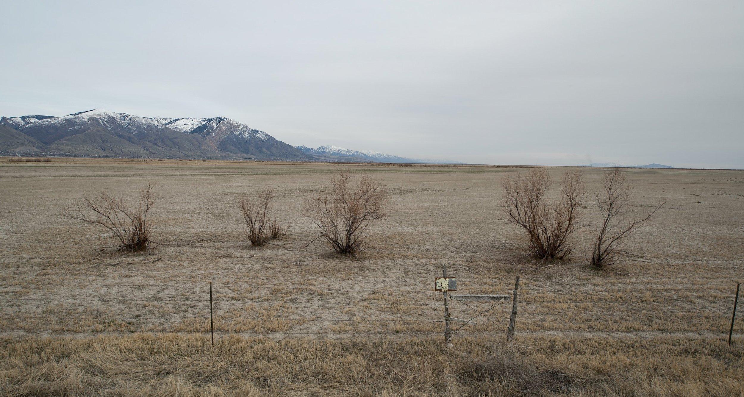 Bear River Migratory Bird Refuge, Utah 2018