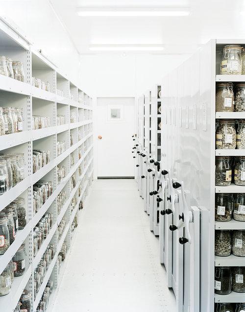 Millenium Seed Bank Vault Interior, England