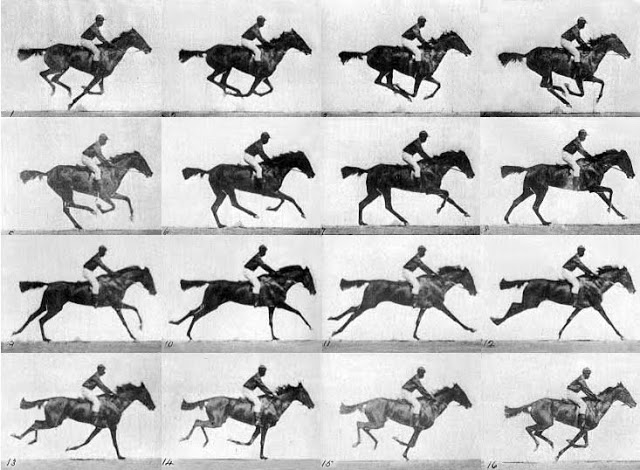 EadweardMuybridgeHorseinmotion.jpg