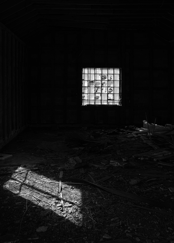 Emptied Cotton Plant, AR
