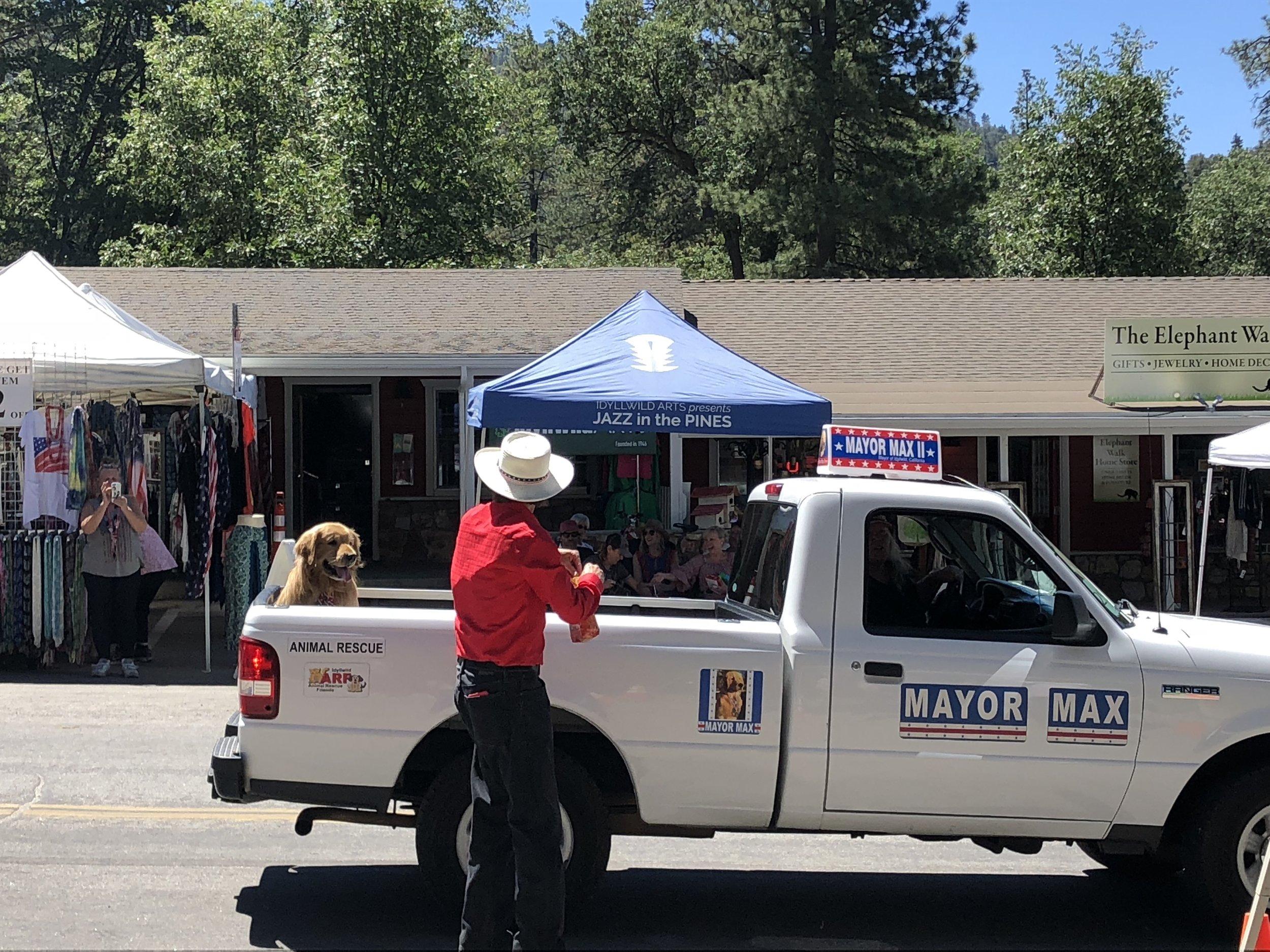 Mayor Max enjoying the Fourth of July Parade in Idyllwild.