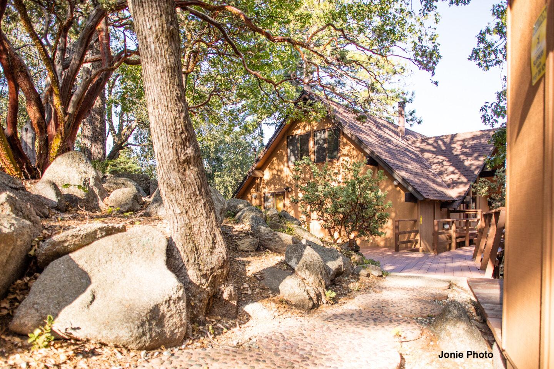 The Overlook vacation rental cabin