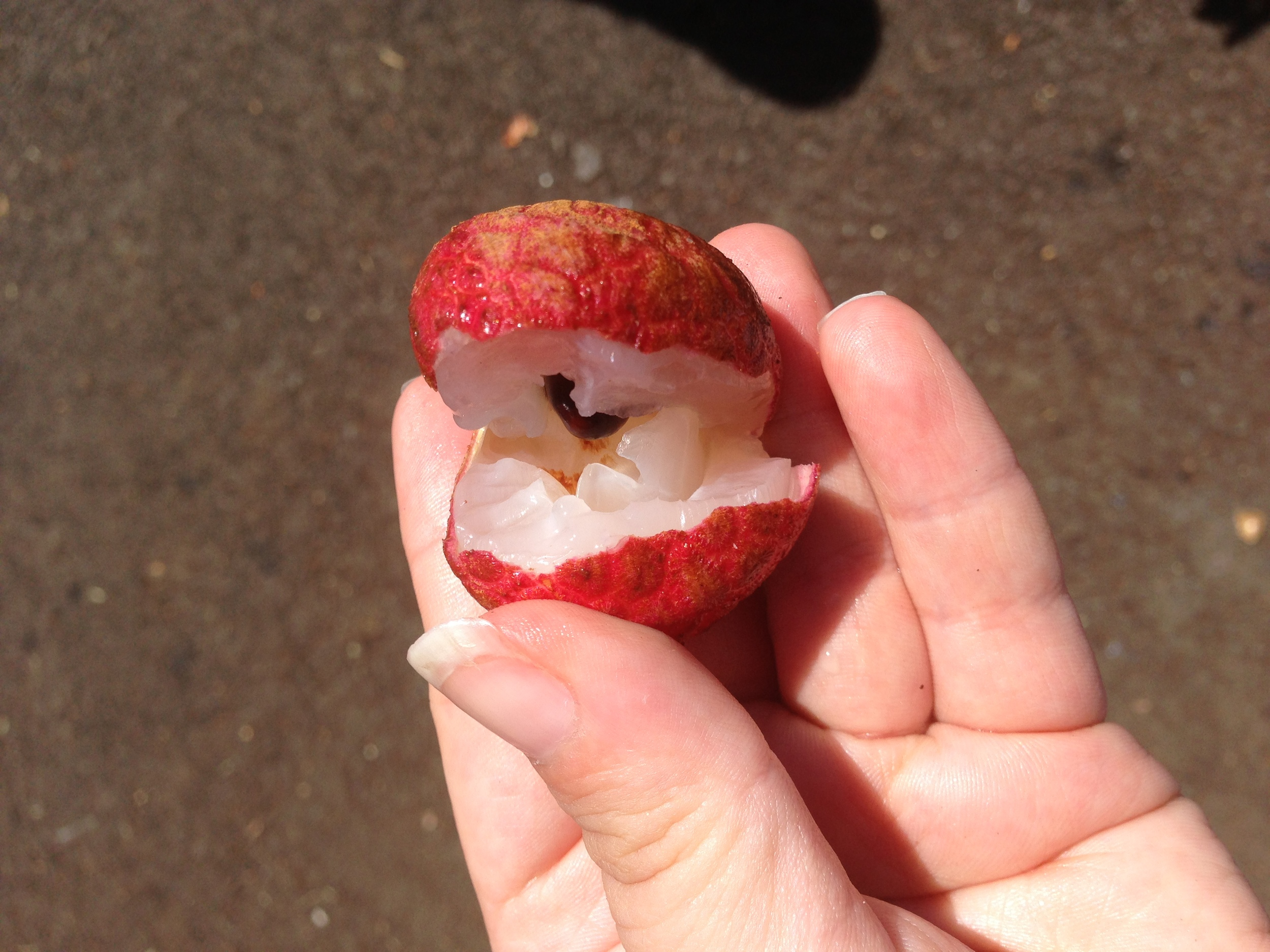 It's a lychee, from  my trip to Hawaii,  but still a delicious fruit that makes me think of summer :)