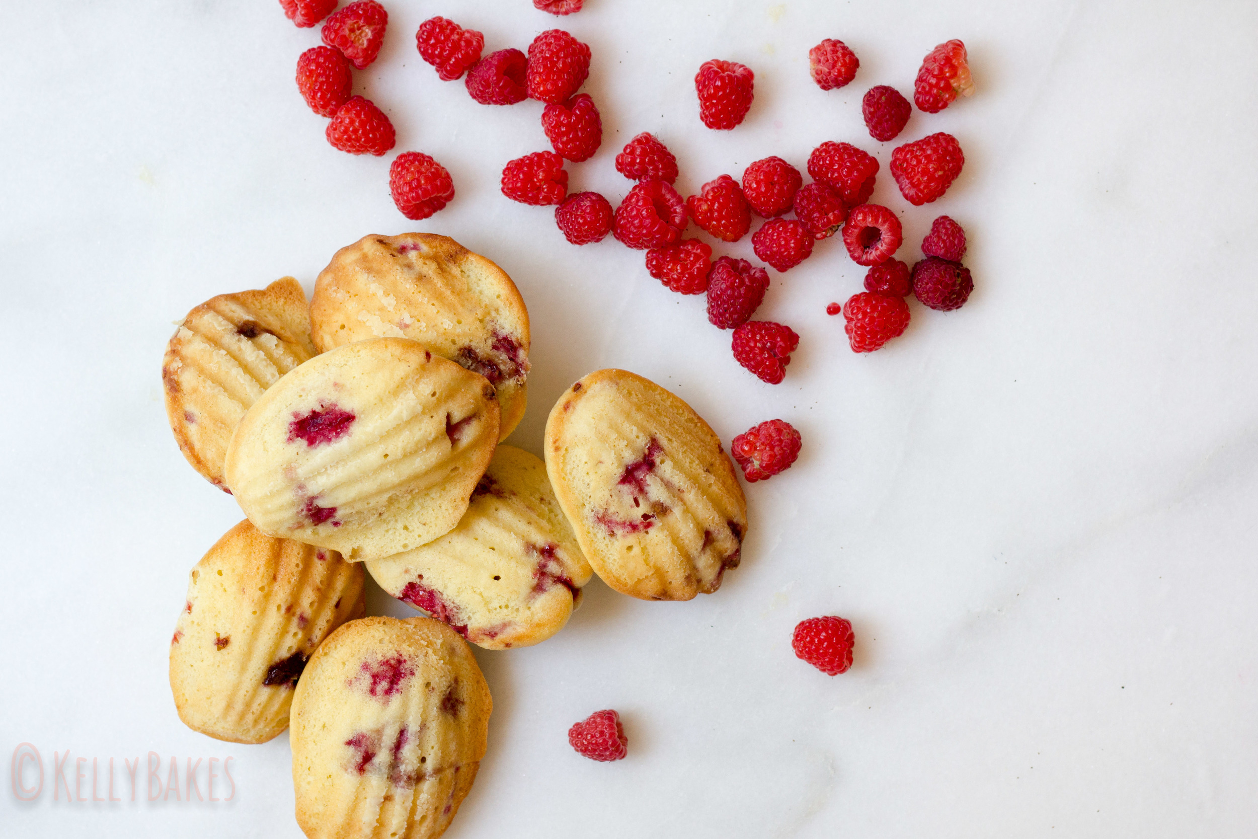 lemon raspberry madeleines