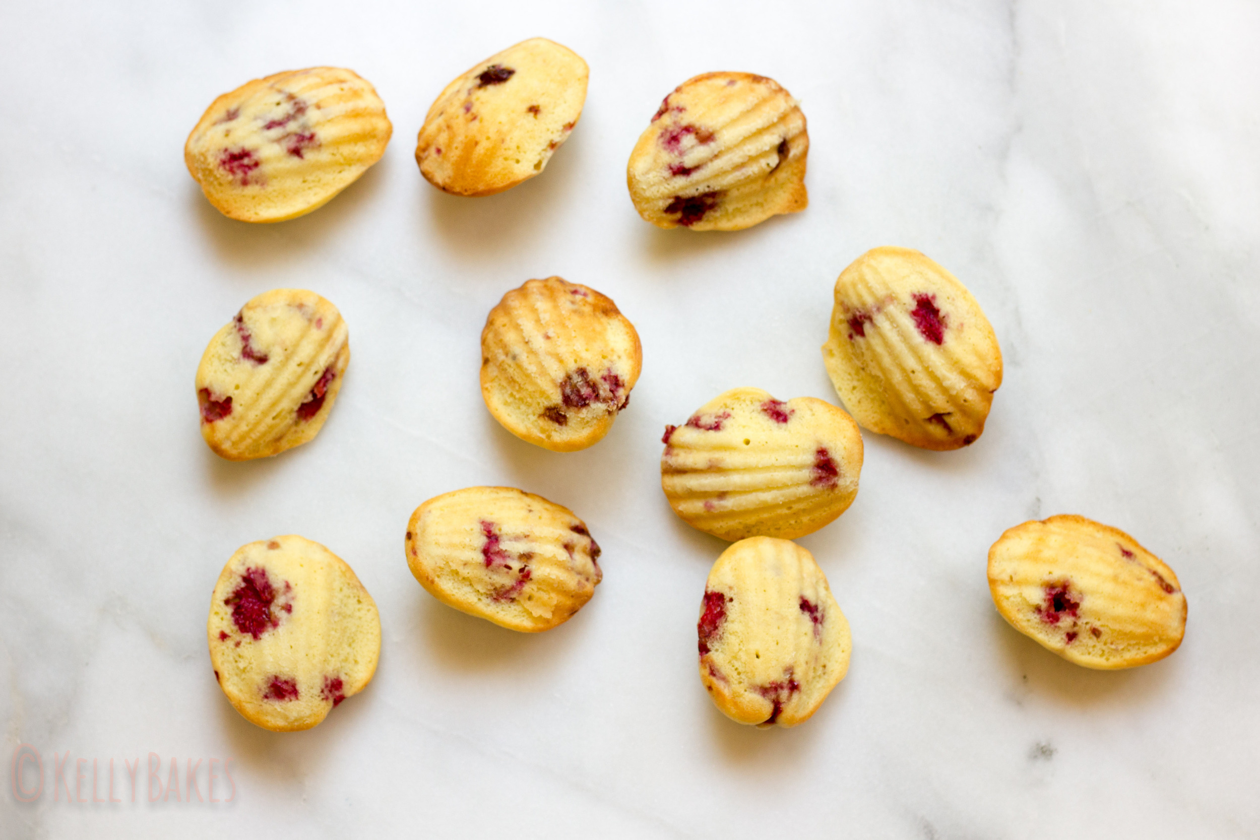 raspberry lemon madeleines