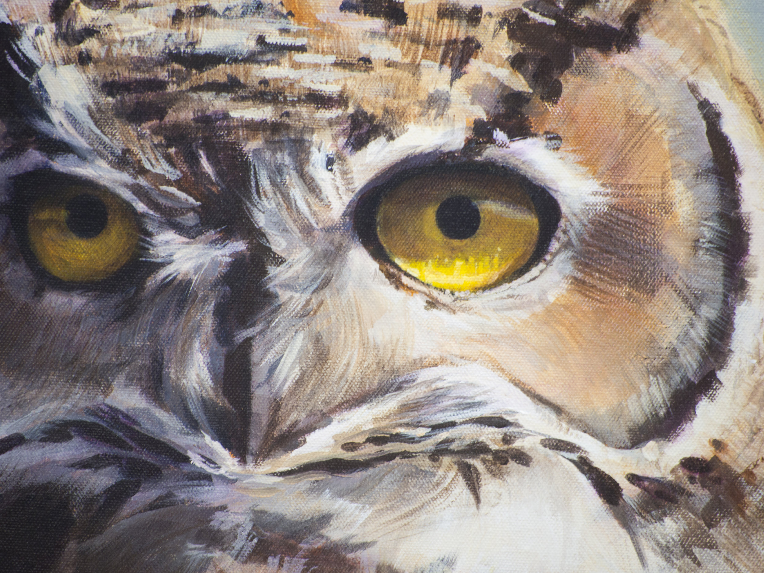 Encounter Calgary owl painting