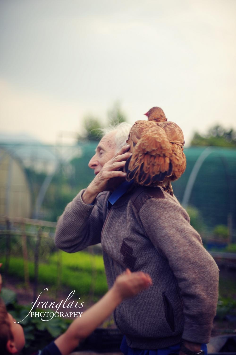 chicken5sm.JPG