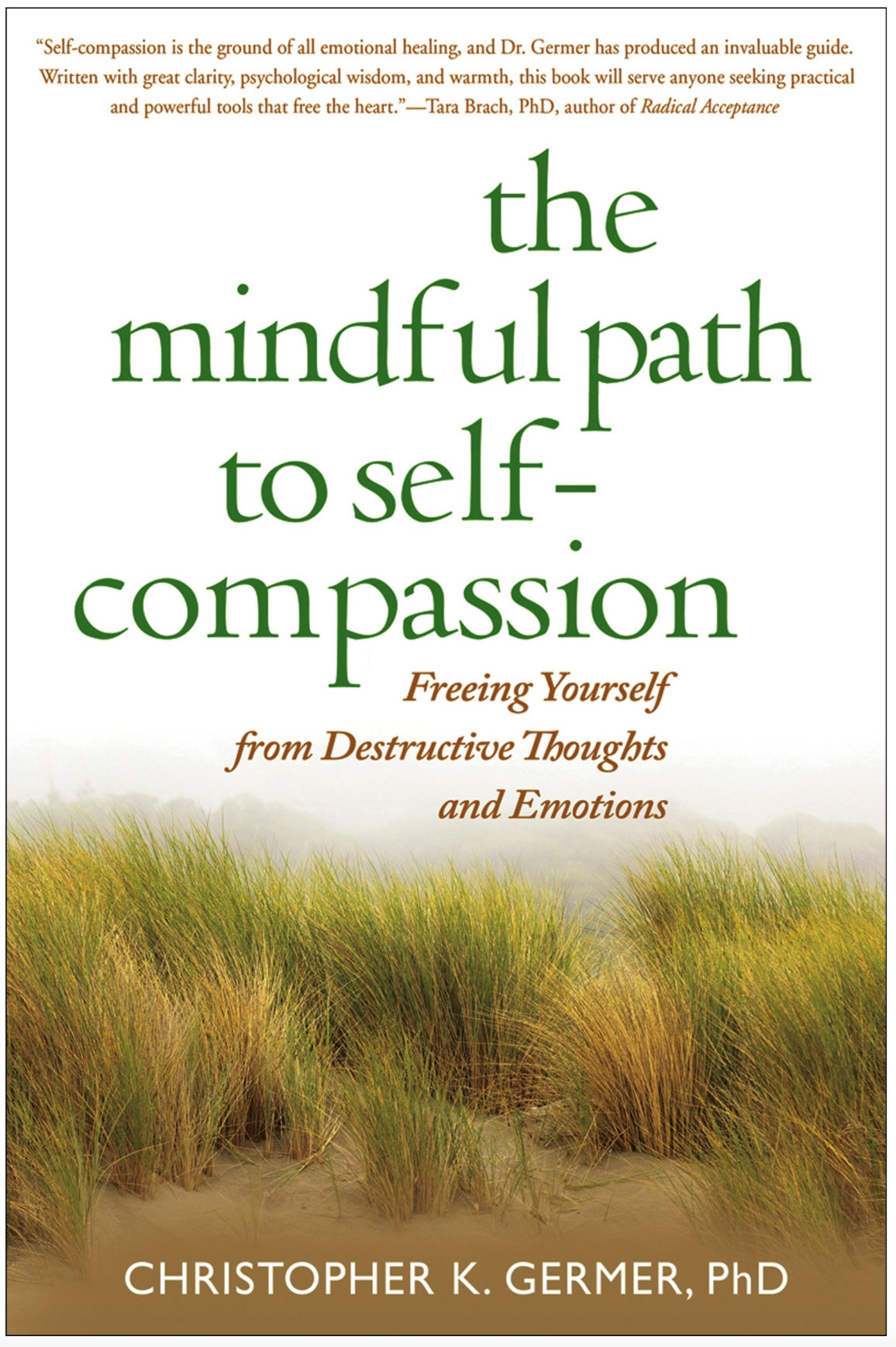 The Mindful Path to Self-Compassion, Freeing Yourself from Destructive Thoughts and Emotions , by Christopher Germer