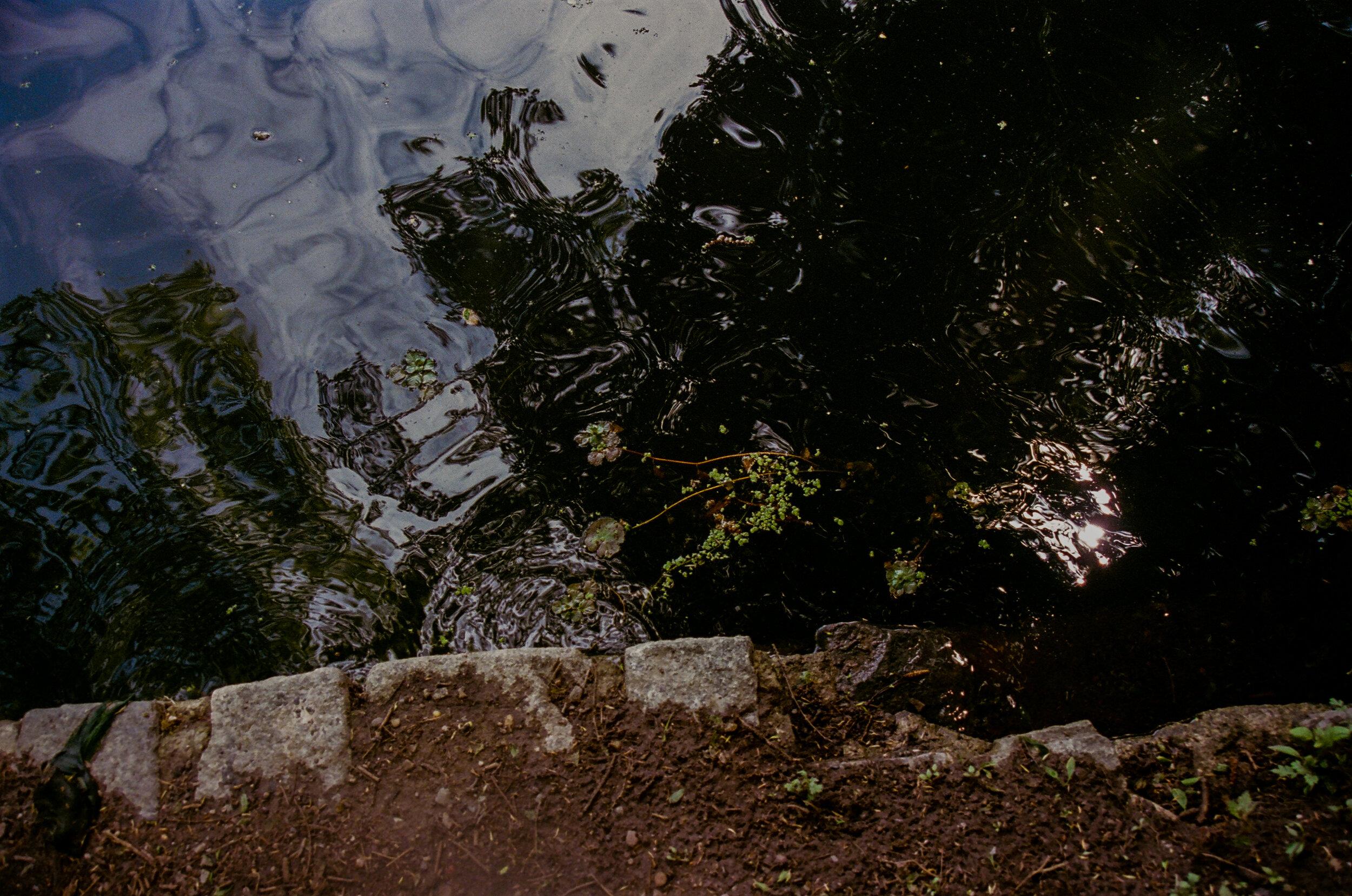 [pond.jpg