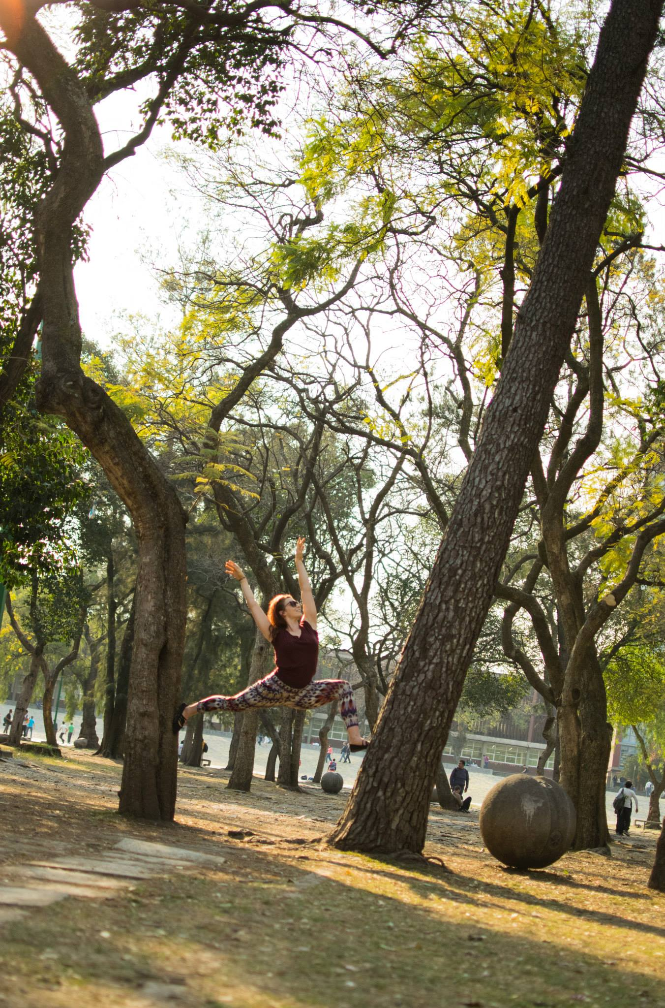 Tree Lunging