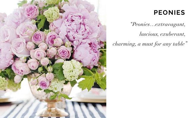 [ Peonies  |  Bloom Times ]