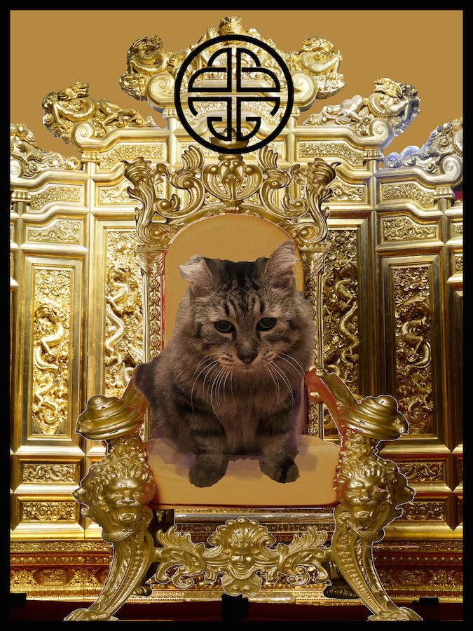 Happy International Cat Day 1