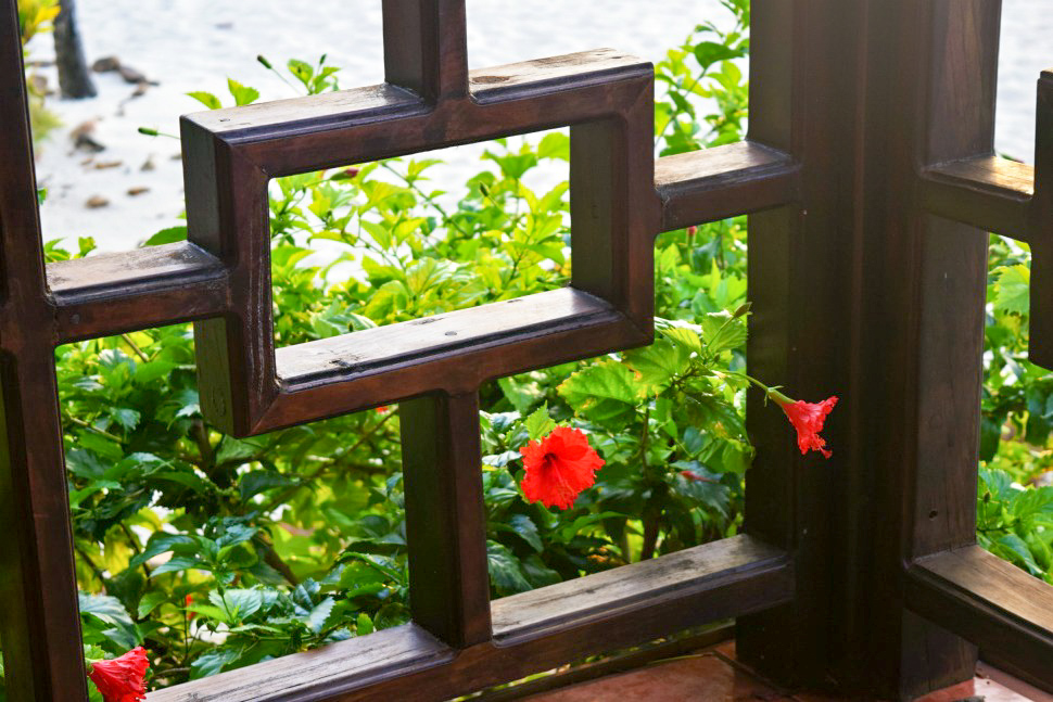 Belize-new-69.jpg
