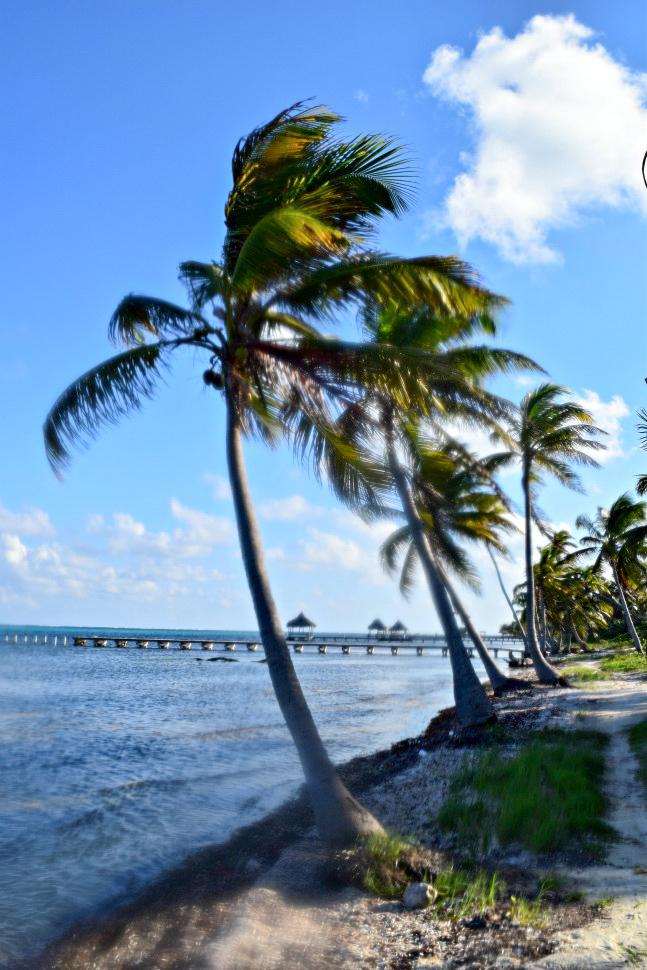 Belize-new-113.jpg