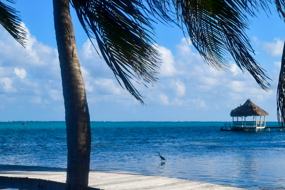 Belize-new-115.jpg