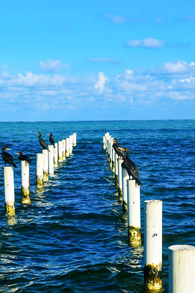 Belize-new-116.jpg