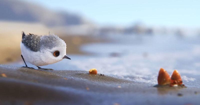 Pixar's 'Piper' is the frontrunner