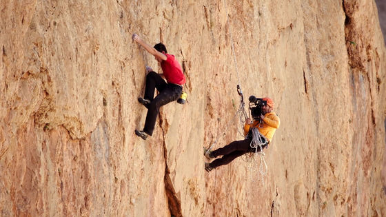 Could be  RBG , but I think  Free Solo  has the edge
