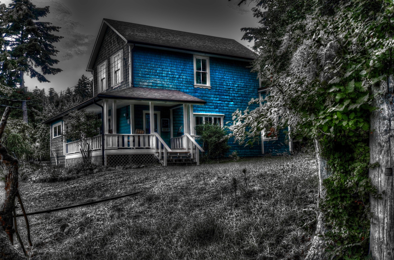 Blue house large.jpg