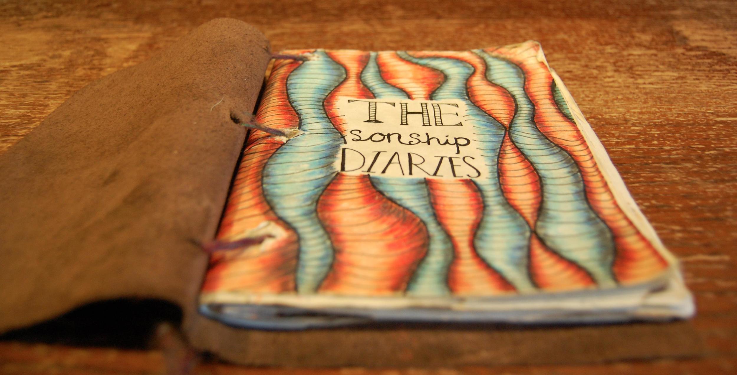 The Sonship Diaries.JPG