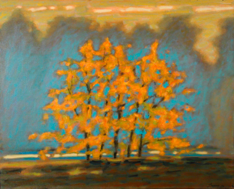 Trees Along The Shore