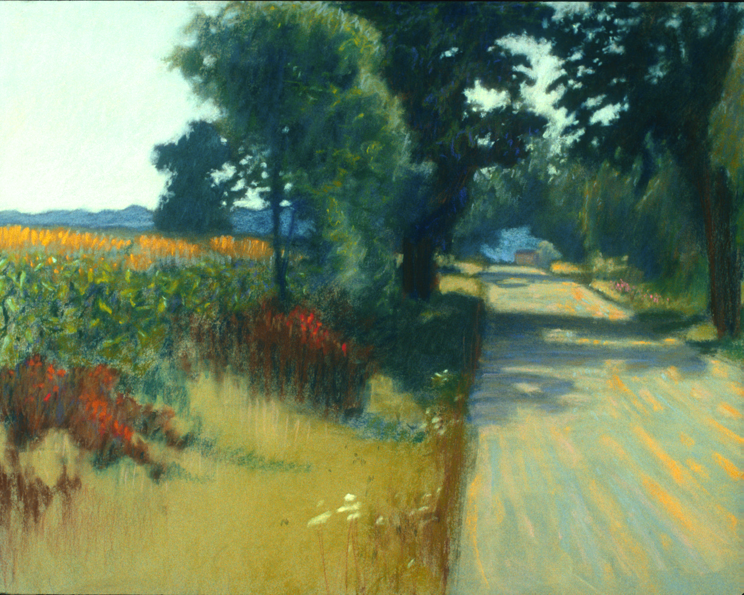 Road Along Cornfield