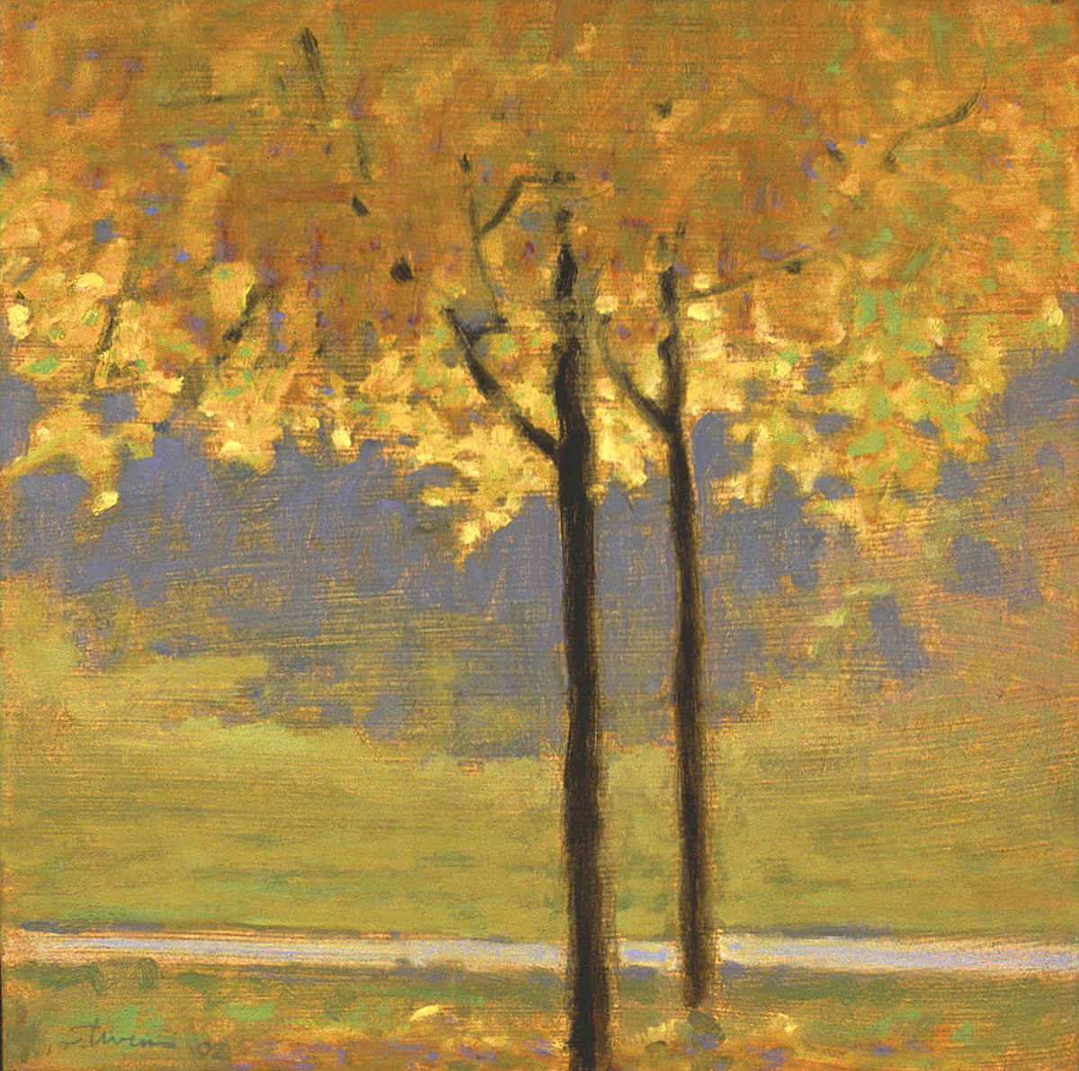 """Twin Maples With Golden Foliage     oil on panel   12 x 12""""   2002"""