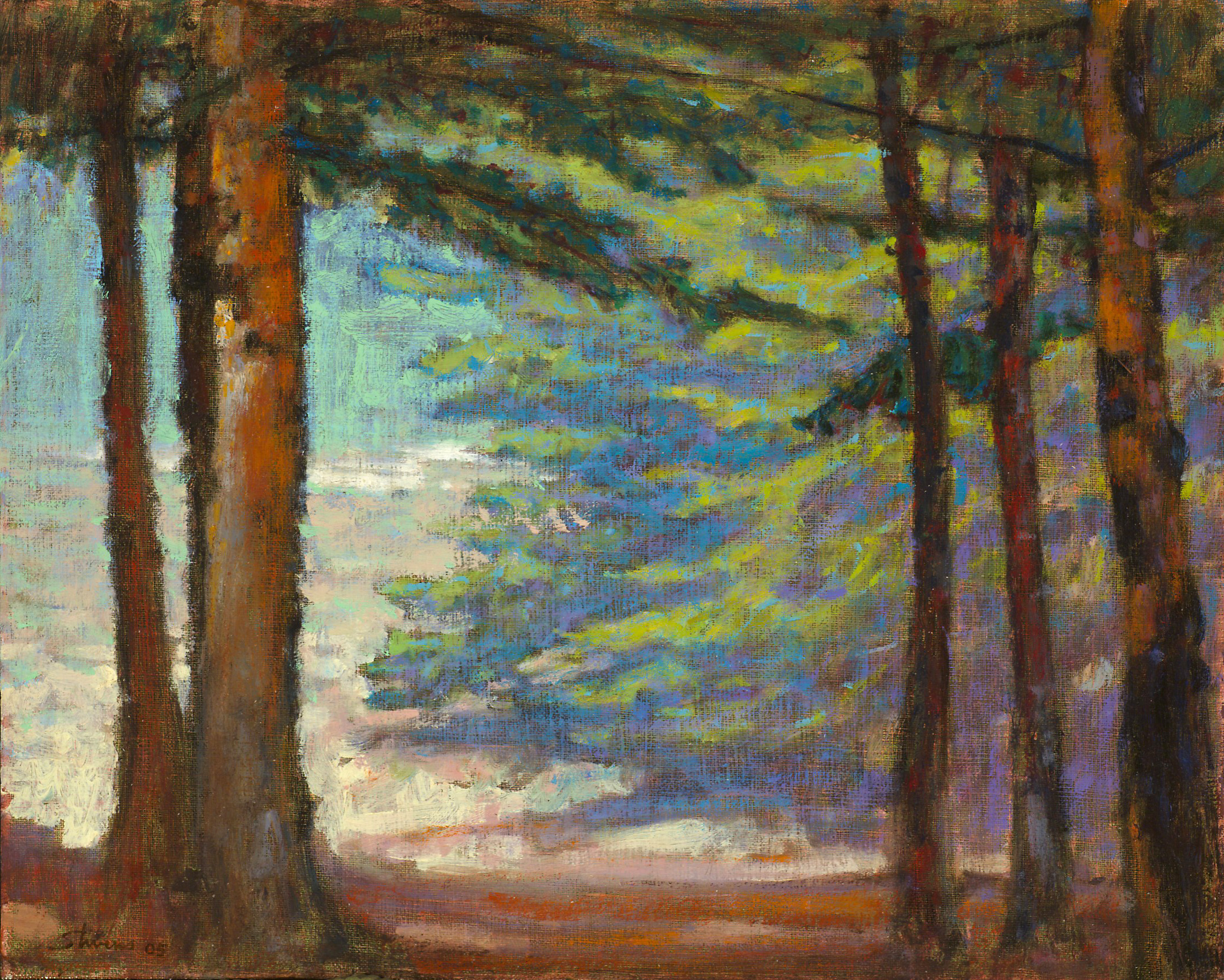 Spruce Hollow   | oil on canvas | 12 x 15"