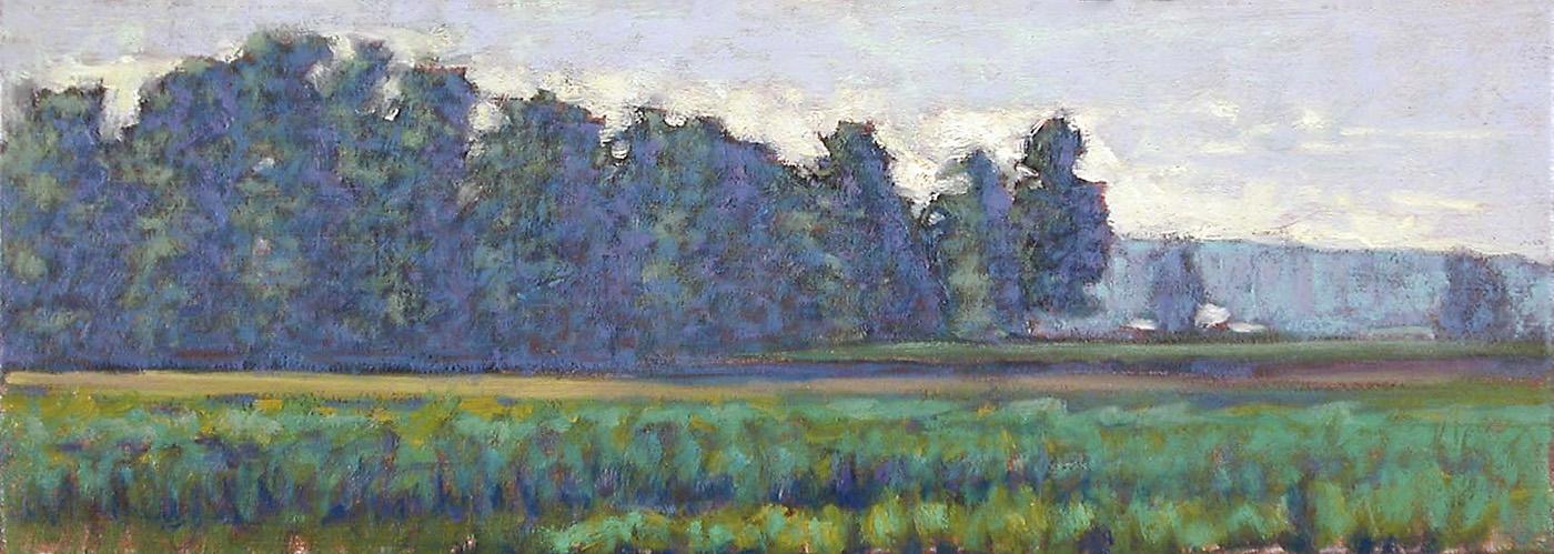 """Field In June     oil on panel   6.5 x 18""""   2004"""