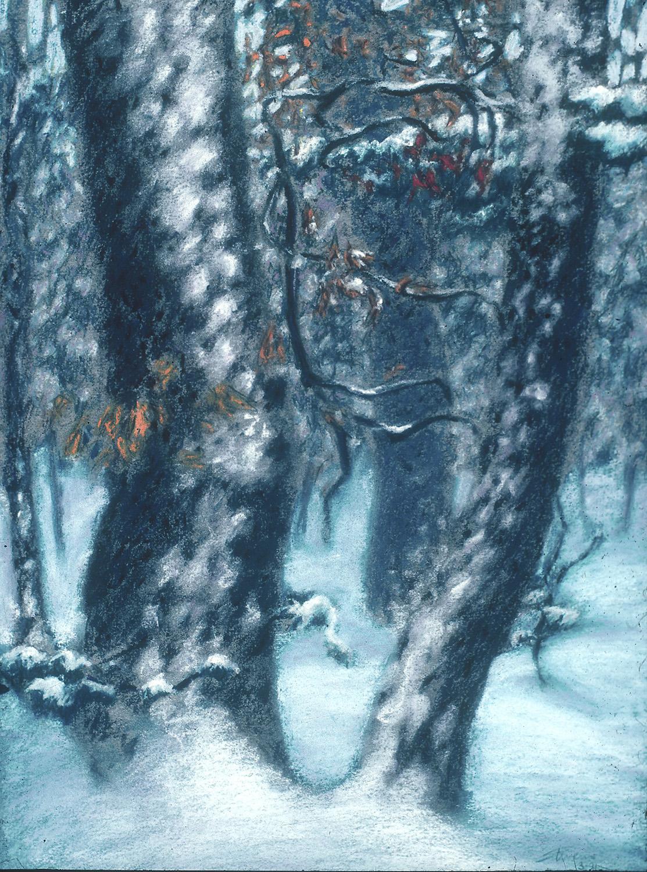 "Snow Laden Trees   | pastel on paper | 15 x 11"" | 1991"