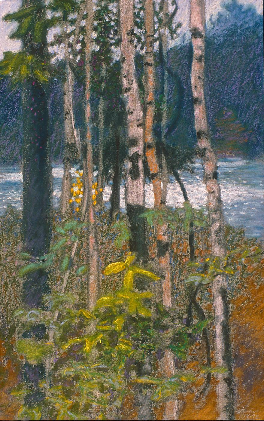 "Birch Island     pastel on paper   16 x 10""   1992"